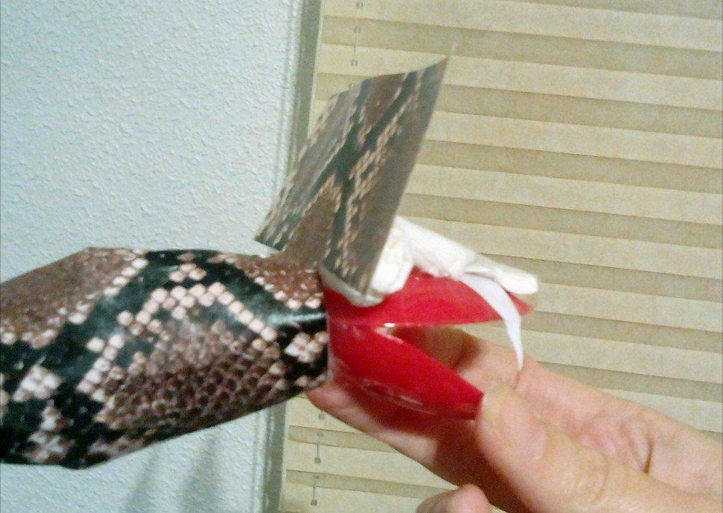 hacer serpientes paso a paso